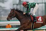 Just a Way,ridden by Norihiro Yokoyama,wins the Nakayama Kinen in Nakayama, Japan on March 2th,2014.