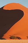 Towering orange sand dunes at Sossusvlei, Nambia.