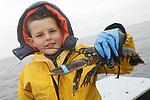 Foto: VidiPhoto<br /> <br /> YERSEKE - Het seizoen voor de kreeftenvisserij is in volle gang en duurt van half maart tot half juli. De zwagers Maurice Boone en Markus Wijkhuis uit Yerseke runnen samen een vissersbedrijf met twee kotters en een werkvlet. Naast het kweken van oesters, vissen ze op kreeften en paling. Volgens de vissers zijn er teveel vergunninghouders, waardoor de visserijdruk op de Oosterschelde is toegenomen en de vangsten tegenvallen. Ondanks dat de horeca gesloten is, staan de prijzen voor de gewilde Oosterschelde kreeft niet onder druk. Foto: Jens Boone (10) toont een 'beveiligde' kreeft.