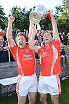 Louth Junior Football Championship Final 2013