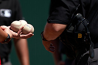Minnesota Twins batboy hands game balls to umpire Fieldin Culbreth during a Major League Spring Training game against the Pittsburgh Pirates on March 16, 2021 at Hammond Stadium in Fort Myers, Florida.  (Mike Janes/Four Seam Images)