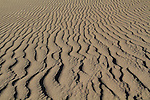Close-up of sand dune, Great Sand Dunes National Park, Colorado. John offers private photo tours to Great Sand Dunes National Park and Rocky Mountain National Park, Colorado.
