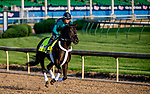 LOUISVILLE, KENTUCKY - APRIL 27: Win Win Win, trained by Michael Trombetta, exercises in preparation for the Kentucky Derby at Churchill Downs in Louisville, Kentucky on April 27, 2019. Scott Serio/Eclipse Sportswire/CSM