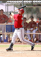 Ryne White / Arizona Diamondbacks 2008 Instructional League..Photo by:  Bill Mitchell/Four Seam Images