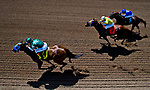 Images from the Eclipse Sportswire Horse Racing Photojouralism Workshop at Santa Anita Park in Arcadia, California between March 28-30, 2018.