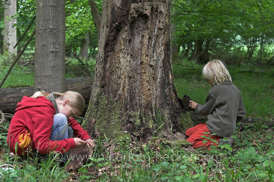 Junge und Mädchen im Wald untersuchen Totholz, Kinder stöbern im Wald