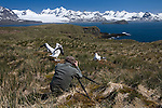 Photographer Art Wolfe on location in South Georgia Island