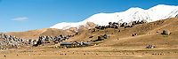 Winter Castle Hill Station with rock formations and sheep farm, Porter's Pass, Canterbury, New Zealand, NZ