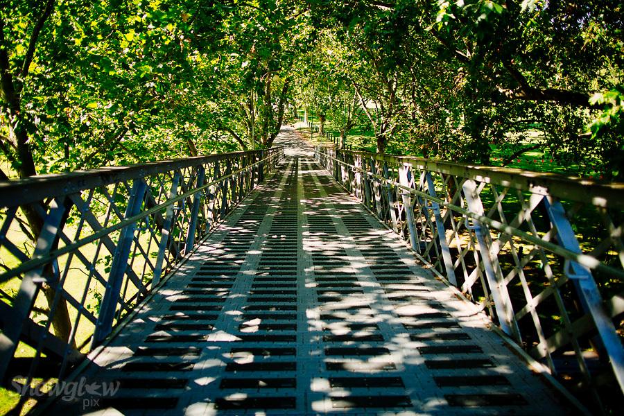 Image Ref: M225<br /> Location: The Royal Botanical Garden<br /> Date: 03.02.17