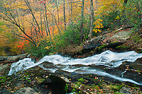 Autumn color along Crabtree Falls - looking down stream
