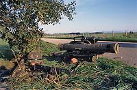 - paratroopers of the airborne brigade Folgore in training with an anti-tank Milan missile launcher....- paracadutisti della brigata aerotrasportata Folgore in addestramento con un lanciamissili anticarro Milan