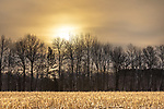 The sun is rising over a cut cornfield in northern Wisconsin.