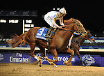 Drosselmeyer, ridden by jockey Mike Smith and trained by Bill Mott wins the Breeders' Cup Classic at Churchill Downs on  November 4, 2011..