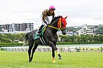 KITAKYUSHU,JAPAN-AUG 15: Mozu Nagareboshi,ridden by Kohei Matsuyama,is post parading before the Kokura Kinen at Kokura Racecourse on August 15,2021 in Kitakyushu,Fukuoka,Japan. Kaz Ishida/Eclipse Sportswire/CSM