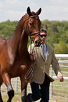 NZL-Andrew Nicholson (SIRIO) 2012 FRA-Saumur International Horse Trial: FIRST HORSE INSPECTION - Wed 16 May - ACCEPTED - CIC**
