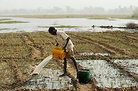 NIGER Zinder, Dorf Zongon Soumaguela, Bewaesserung eines Gemuesegartens aus einem angelegten Wasser Reservoir / NIGER Zinder, village Zongon Soumaguela, irrigation of vegetable garden from water pond , MORE PICTURES ON THIS SUBJECT AVAILABLE!!