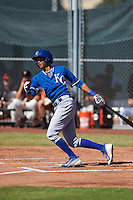 Kansas City Royals Wander Franco (39) during an instructional league game against the San Francisco Giants on October 22, 2015 at the Giants Baseball Complex in Scottsdale, Arizona.  (Mike Janes/Four Seam Images)