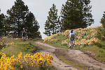 Mountain Biker and hiker on Mount Jumbo trail in Missoula, Montana