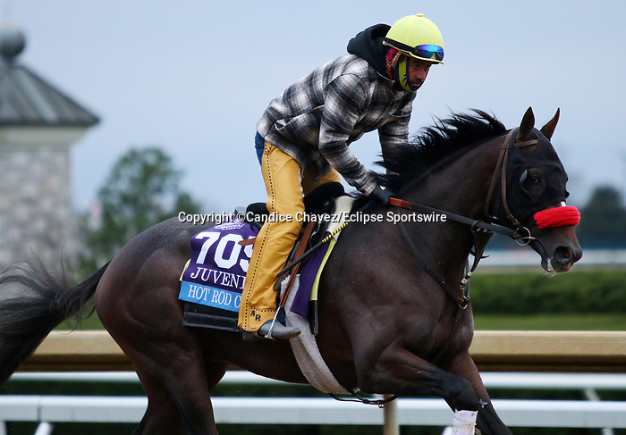 Hot Rod Charlie, trained by trainer Doug F. O'Neill, exercises in preparation for the Breeders' Cup Juvenile at Keeneland Racetrack in Lexington, Kentucky on October 30, 2020.