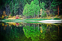Green, gold and red reflections on a lake at Kikomun Provincal Park British Columbia