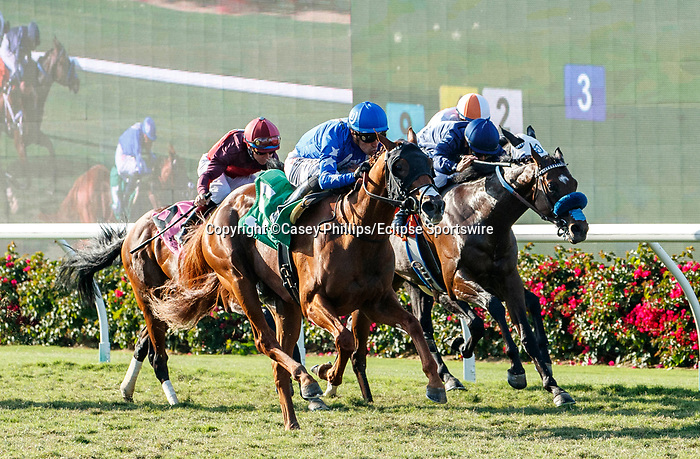 DEL MAR, CA  SEPTEMBER 6: #5 Mackinnon, ridden by Juan Hernandez, in the stretch of the Del Mar Juvenile Turf on September 6, 2021 at Del Mar Thoroughbred Club in Del Mar, CA. (Photo by Casey Phillips/Eclipse Sportswire/CSM)