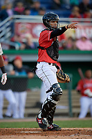 Batavia Muckdogs catcher Igor Baez (6) during a NY-Penn League game against the Auburn Doubledays on June 14, 2019 at Dwyer Stadium in Batavia, New York.  Batavia defeated 2-0.  (Mike Janes/Four Seam Images)