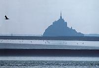 Europe/France/Basse-Normandie/50/Manche/Le Mont St-Michel: les grèves de la baie et la silhouette du Mont