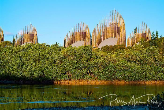 coté mangrove