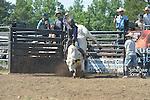 True Grit Bull Camp - 5.28-29.2016