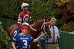 #3 Tapiture with jockey Ricardo Santana Jr. aboard before the running of the Rebel Stakes (Grade II) at Oaklawn Park in Hot Springs, Arkansas-USA on March 15, 2014. (Credit Image: © Justin Manning/Eclipse/ZUMAPRESS.com)