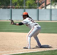 Wander Franco (originally from Astros organization) - San Francisco Giants 2019 spring training (Bill Mitchell)