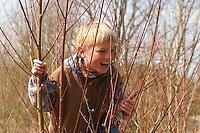 Kind, Junge klettert in Kopfweide, Lebensfreude, lachend, klettern