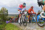 The peloton including Dutch Champion Mathieu Van Der Poel (NED) Alpecin-Fenix and Matteo Trentin (ITA) CCC Team on the first ascent of the Paterberg during the Tour of Flanders 2020 running 244km from Antwerp to Oudenaarde, Belgium. 18th October 2020.  <br /> Picture: Serge Waldbillig   Cyclefile<br /> <br /> All photos usage must carry mandatory copyright credit (© Cyclefile   Serge Waldbillig)