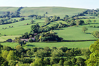 England, Offa's Dyke Footpath near Newcastle-on-Clun, diagonally along the tree line from upper right to lower left.  Shropshire.