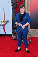 "LOS ANGELES, USA. August 27, 2019: Jeremy Ray Taylor at the premiere of ""IT Chapter Two"" at the Regency Village Theatre.<br /> Picture: Paul Smith/Featureflash"
