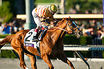 WISE DAN, ridden by John Velazquez and trained by Charles Lopresti, wins the Breeders' Cup Mile at Santa Anita Park in Arcadia, California on November 3, 2012.