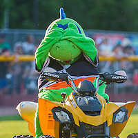 31 July 2016: Vermont Lake Monsters Mascot Champ entertains the fans prior to a game against the Connecticut Tigers at Centennial Field in Burlington, Vermont. The Lake Monsters edged out the Tigers 4-3 in NY Penn League action.  Mandatory Credit: Ed Wolfstein Photo *** RAW (NEF) Image File Available ***