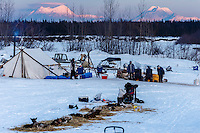 A team rests in front of the volunteer-manned checkpoint at the Nikolai checkpoint during Iditarod 2016.  Alaska.  March 08, 2016.  <br /> <br /> Photo by Jeff Schultz (C) 2016 ALL RIGHTS RESERVED