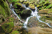 Devils Kitchen Gorge on Bumpus Brook in Randolph, New Hampshire USA during the autumn months.