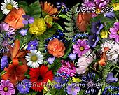 Lori, FLOWERS, BLUMEN, FLORES, paintings+++++Lori's Garden,USLS234,#f#, EVERYDAY ,puzzle,puzzles