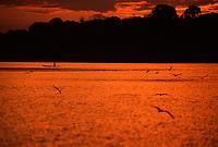 pôr do sol na Reserva Extrativista do Cuniã - Rondônia<br />dezembro de 2003