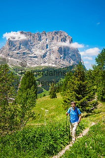 Italien, Suedtirol (Trentino - Alto Adige), Dolomiten: Wandern am Groednerjoch, im Hintergrund der Langkofel | Italy, South Tyrol (Trentino - Alto Adige), Dolomites: hiking area near Gardena Pass (Passo Gardena), Sassolungo mountain at background