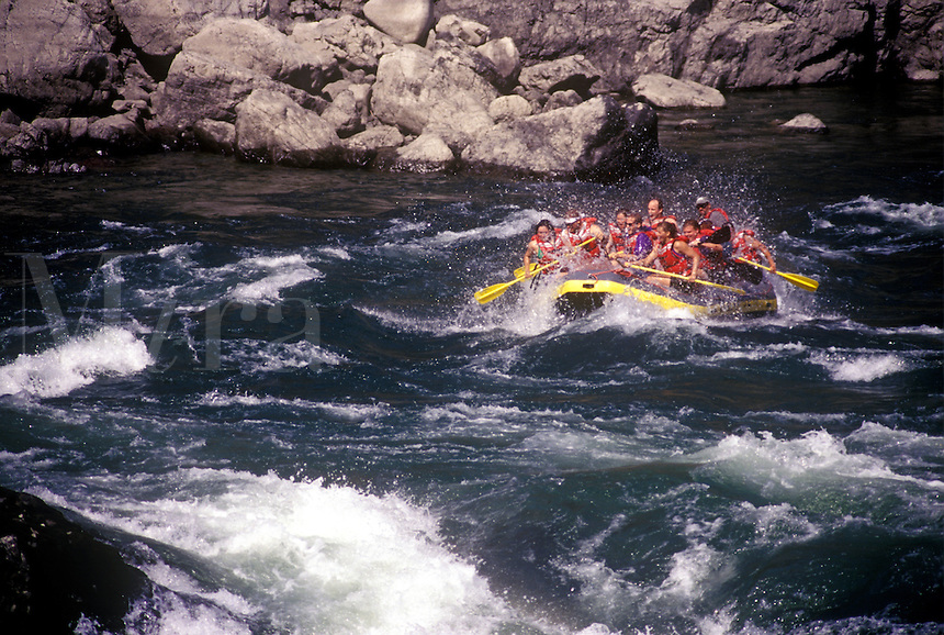 White water rafters in the turbulent waters of the Thompson River, Spences Bridge, BC Canada