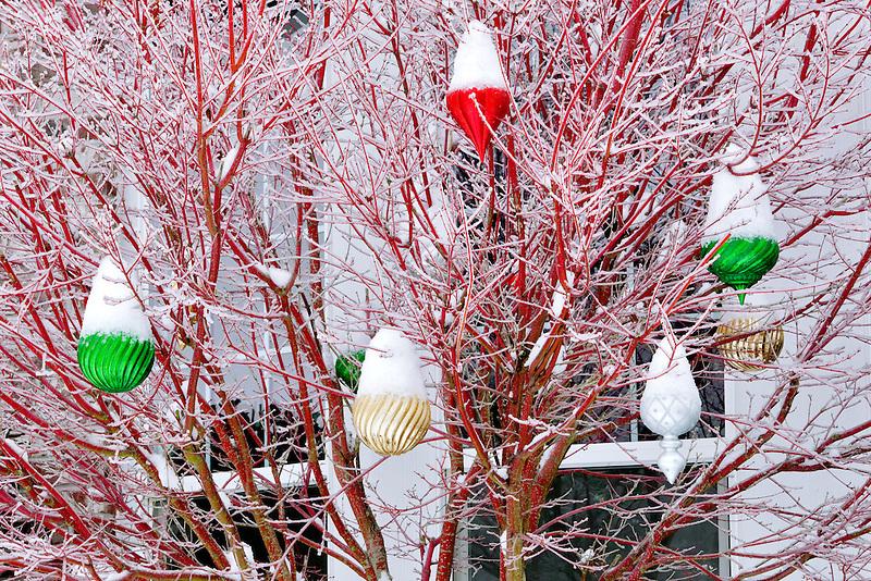 Large Christmas balls with snow.