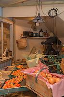 Royaume-Uni, îles Anglo-Normandes, île de Guernesey, Castel : Saumarez Park - Guernsey folk Museum: musée du folklore: la production de tomates au 19 éme  s// United Kingdom, Channel Islands, Guernsey island, Castel : Saumarez Park , Guernsey folk Museum: Guernsey Tomato Industry