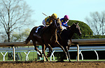 LEXINGTON, KY - APR 20: Valadorna (#9 outside, ridden by Brian J. Hernandez Jr.) wins the 24th running of the G3 Doubledogdare at Keeneland, Lexington, Kentucky over Apologynotaccepted ridden by Julien Leparoux.) Owner Stonestreet Stables LLC (Barbara Banke), trainer Mark E. Casse. By Curlin x Goldfield, by Yes It's True. (Photo by Mary M. Meek/Eclipse Sportswire/Getty Images)