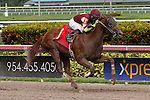 March 28, 2015:  Florida Bred #1Abounding Legacy with jockey Corey Lanerie on board breaks his maiden on Florida Derby Day at Gulfstream Park  in Hallandale Beach, Florida.    Liz Lamont/ESW/CSM
