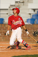 Luis Mateo #4 of the Johnson City Cardinals follows through on his swing versus the Burlington Royals at Howard Johnson Stadium June 27, 2009 in Johnson City, Tennessee. (Photo by Brian Westerholt / Four Seam Images)