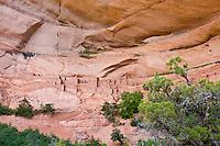 Betatakin cliff dwellings, Navajo National Monument, Arizona, USA