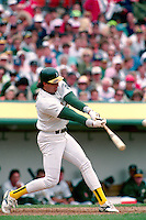 OAKLAND, CA - Jose Canseco of the Oakland Athletics bats during a game at the Oakland Coliseum in Oakland, California in 1990. Photo by Brad Mangin